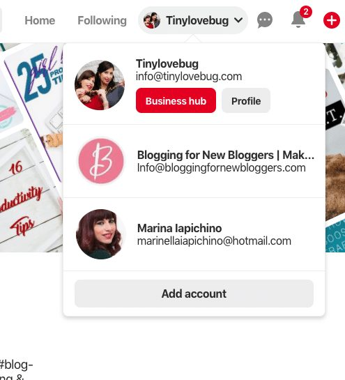 multiple Pinterest accounts